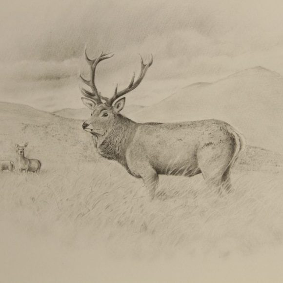 Red Deer & Golden Eagle