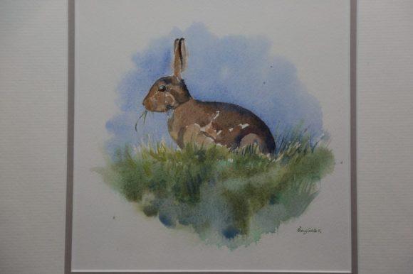 Hare Vignette