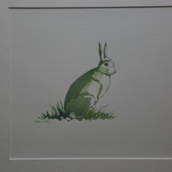Green Hare.