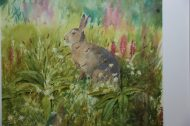 Summer Hare & Orchids